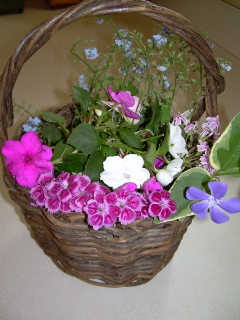 Small_treasures1