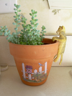 Garden_whimsy_indoors1