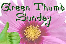 Green_thumb_sunday_logo
