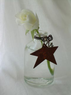 Star_rose1