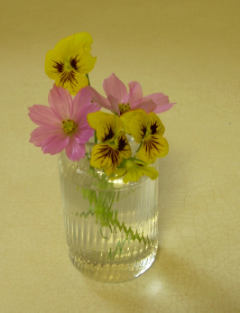 Arrangement_cosmos_pansies1