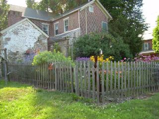 Aunt_daisys_summer_garden1
