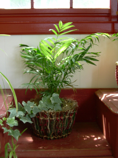 Indoor_planter1