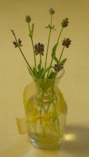 Lavender_bouquet1
