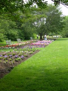 Lwg_idea_garden_21