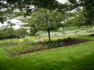 Lwg_idea_garden_31